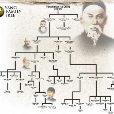 Paradojas en la historia de estilo Yang